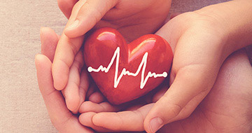 Image displaying a toy heart in hand to portray the company Google Health